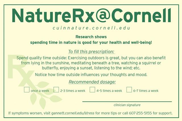 nature rx prescription