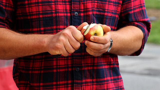 Slicing cider apples for sampling.