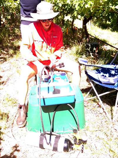 Kallas measuring midday water potential during a 40-degree C (104 F) heatwave last week.
