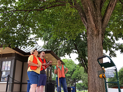 Neal, Denig and Bassuk assess the health of one of the iconic elms ringing the National Mall.  (Photo: Yoshiki Harada)