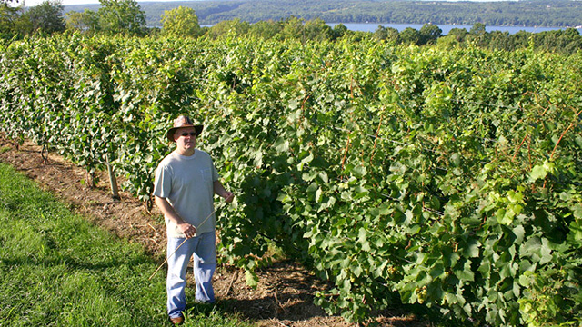 James Meyers is the new viticulture and wine specialist covering the 17-county Cornell Cooperative Extension Eastern New York Commercial Horticulture Program area.