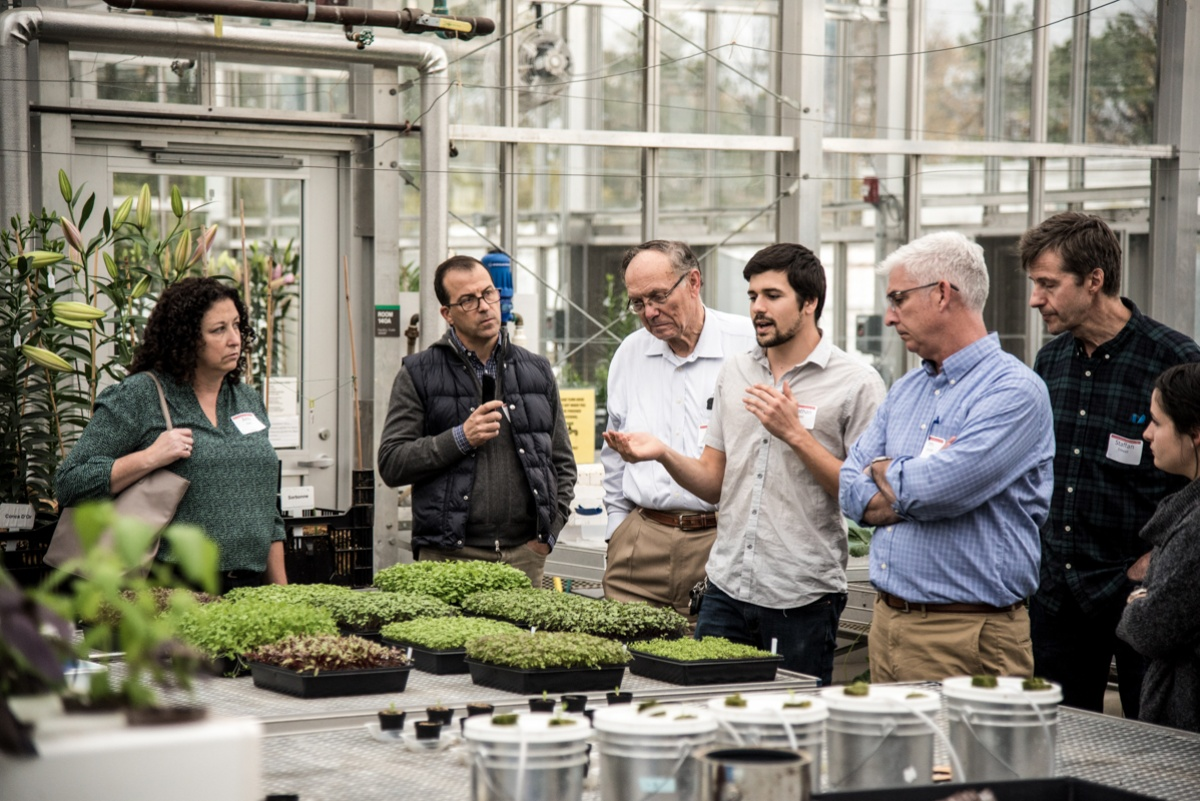 Doctoral student Jonathan Allred, center, leads a tour of Cornell greenhouses in November. Photo by R.J. Anderson / Cornell Cooperative Extension.