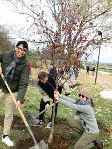 'Urban Eden' students planting crabapples along Cayuga Lake Inlet. (Photo: Carol Eichler)