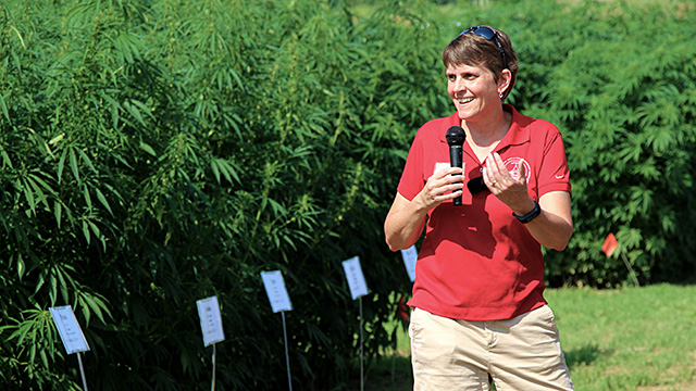 Smart welcomes attendees at Cornell industrial hemp field day, August 2017.