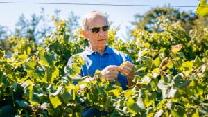 bruce reisch with grapevines on a sunny day