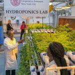 CCE Hydroponics lab in NYC