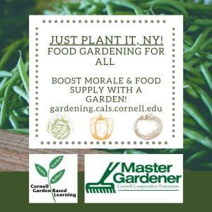 Just Plant It, NY!