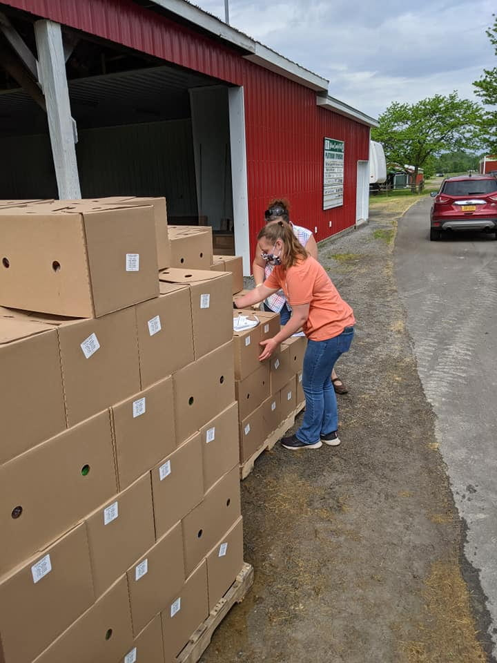 Orleans County Food Box Giveaway