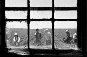 Internment camp photo