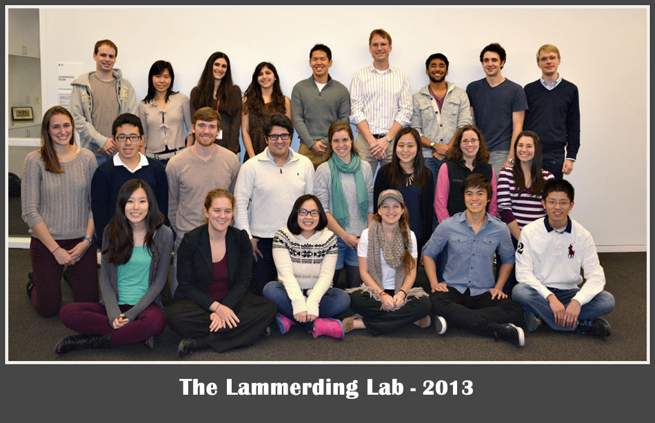 Lammerding-Lab-2013-optmz