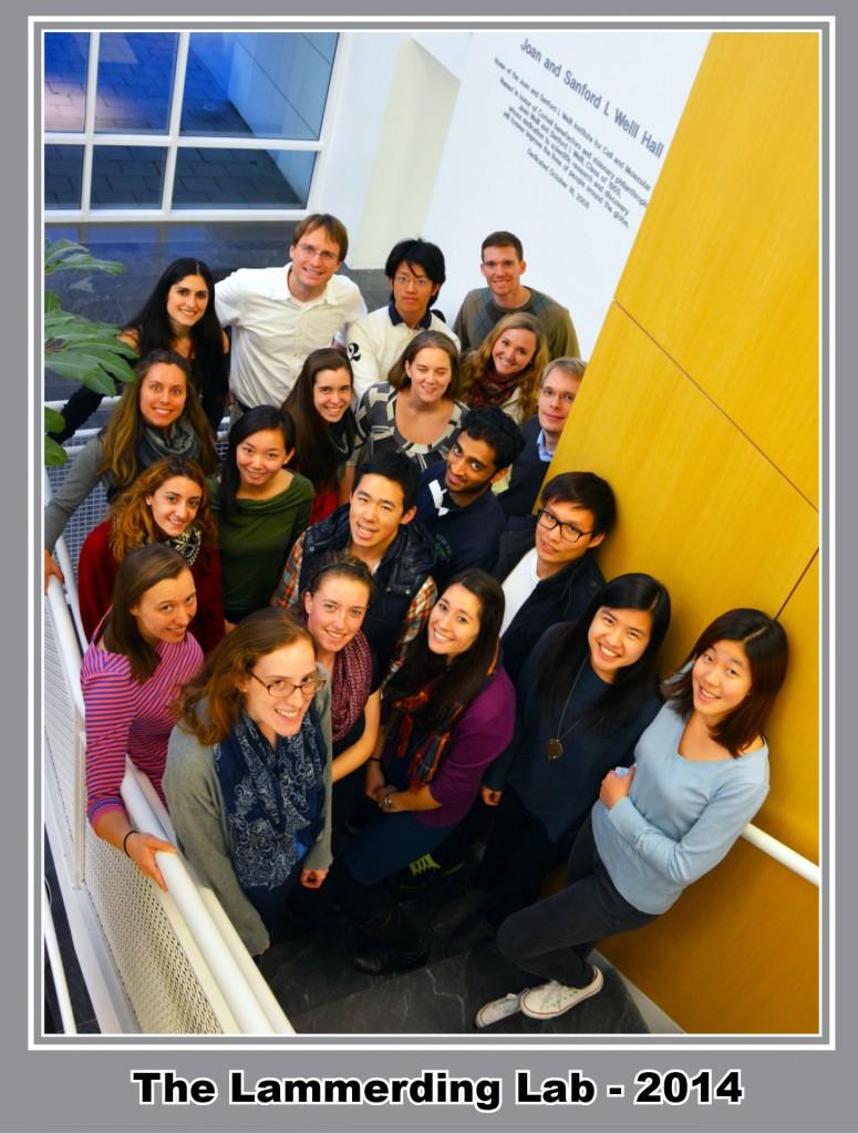 Lammerding Lab 2014