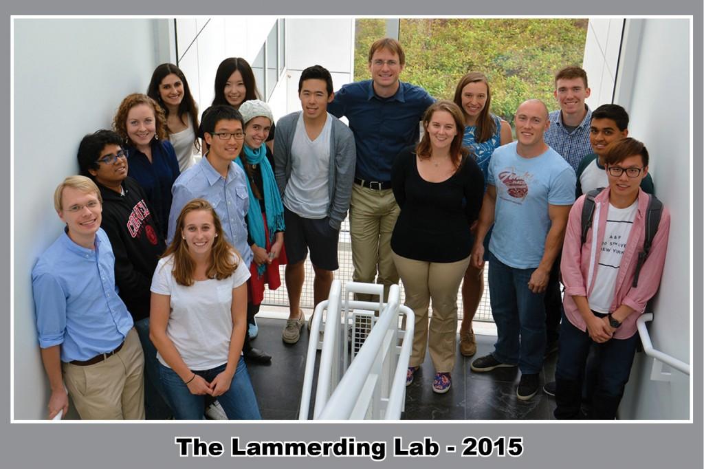 Lammerding Lab 2015 Framed