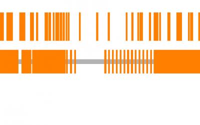 Democratizing genotyping with rAmpSeq