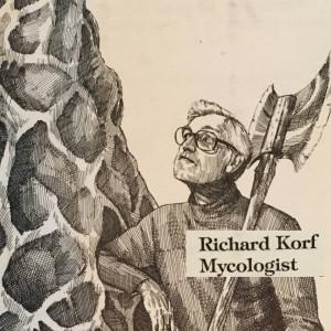 Korf-drawing