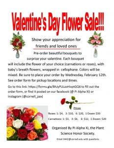 advertisement for valentine flower sale