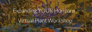 title of workshop