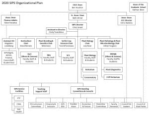 diagram showing reporting relationships for SIPS