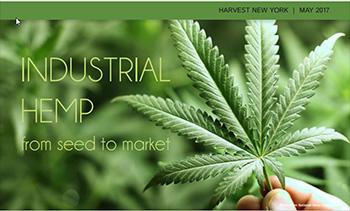 industrial hemp cover