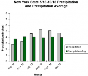 graph showing average precipitation in NYS from may to november 2018