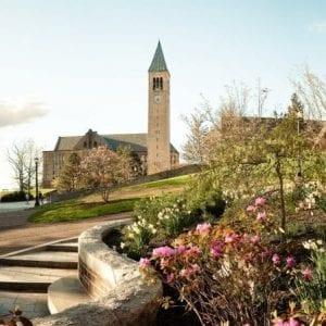 Cornell Panoramic