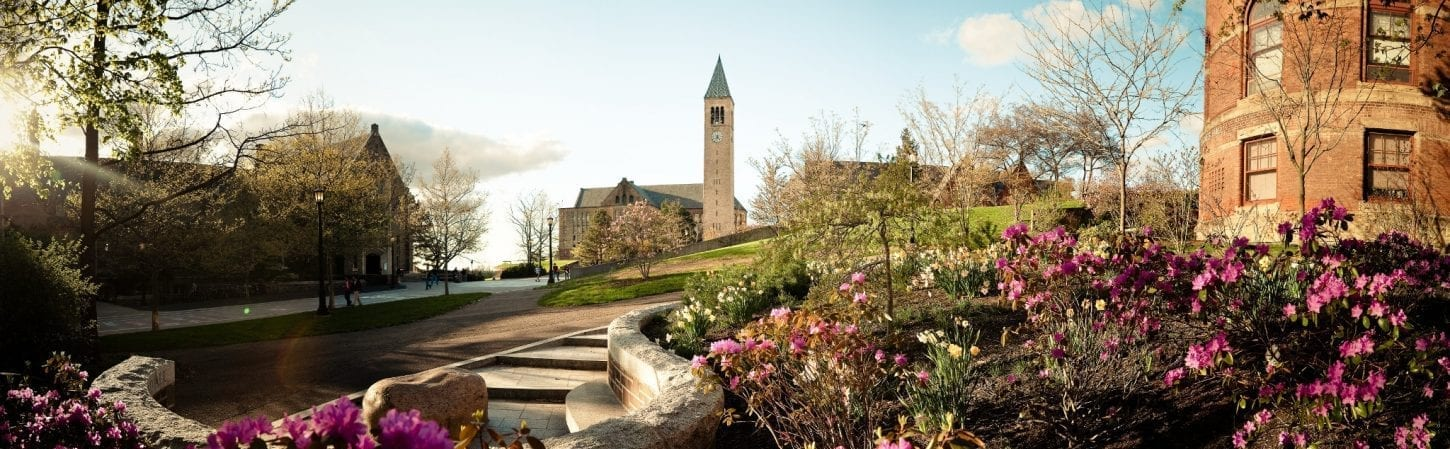 Photo of McGraw Tower seen from near the footbridge next to Barnes Hall at Cornell