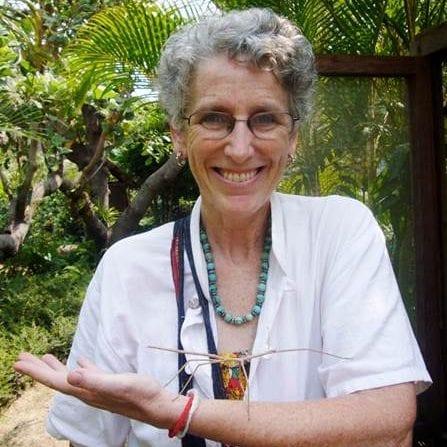 Photo of Barbara Lang