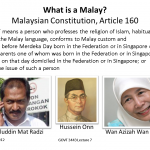"Question: Does ""race"" separate Malays from Chinese or Indians?