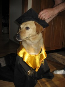 Graduate from a behavior class today!