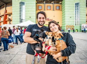 clients and pets at Spayathon for Puerto Rico