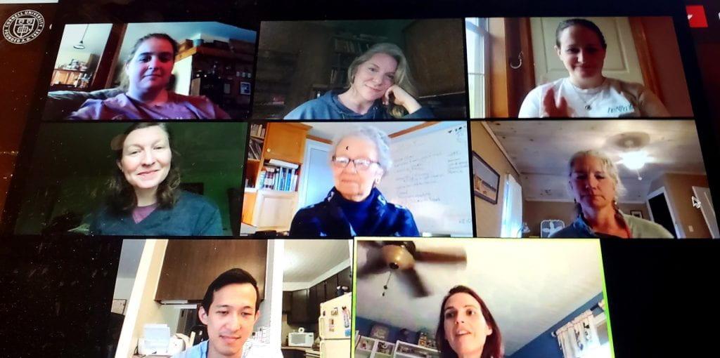 image of MSMP staff meeting via zoom