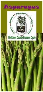 Asparagus brochure