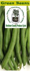 Green beans brochure