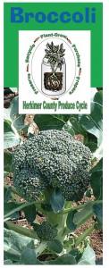 Broccoli brochure