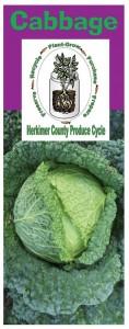 Cabbage brochure
