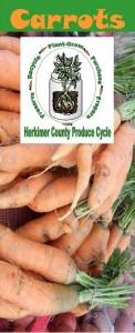 Carrots brochure