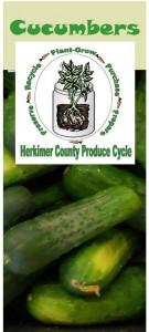 Cucumbers brochure