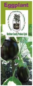 Eggplant brochure
