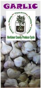 Garlic brochure