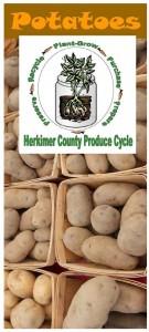 Potatoes brochure