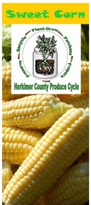 Sweet corn brochure