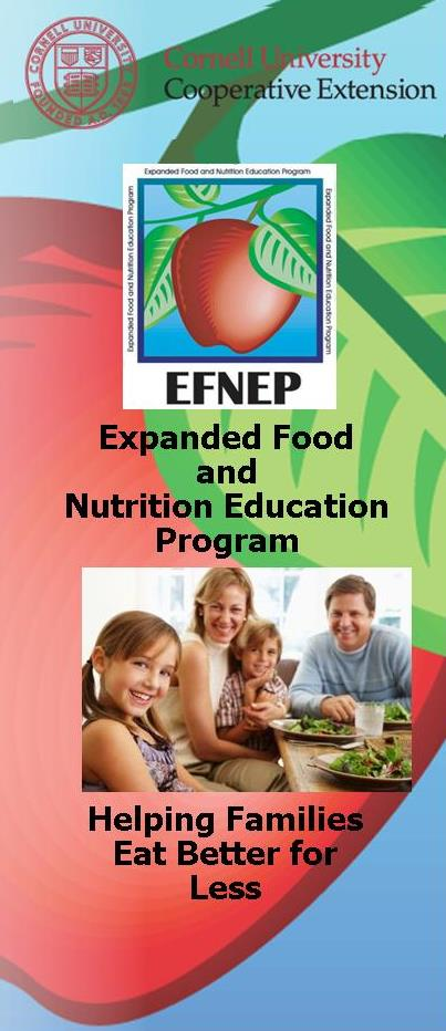 Graphic of EFNEP brochure first panel