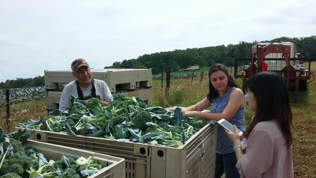 Carol Dong discusses broccoli production with grower Duane Cassell and Virginia Extension Agent Ashley Edwards.