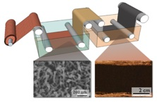 Roll-to-Roll manufacturing of nanowires on metal contacts