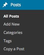 WP admin posts