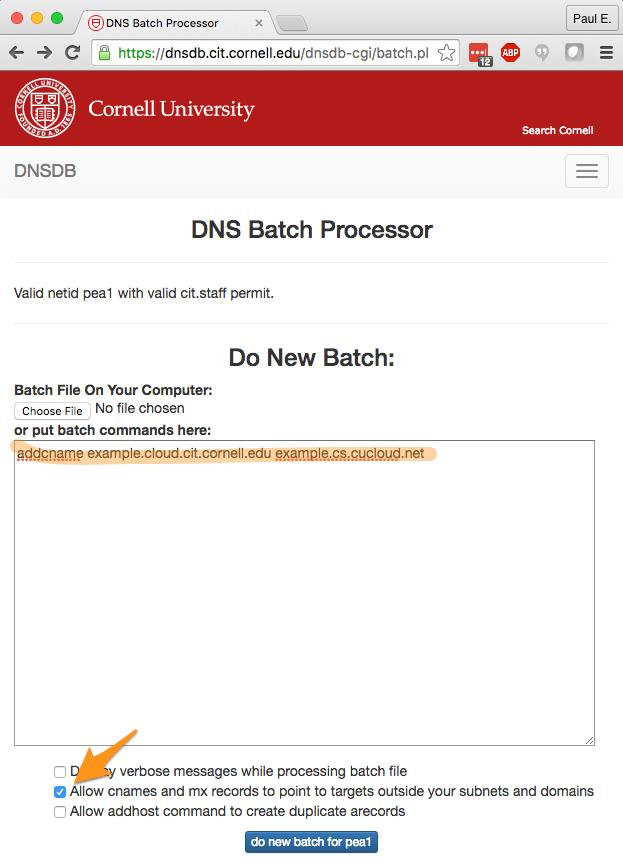 Cornell Batch Processor Input