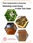 BeeMarketingCoverGraphic