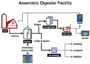 Anaerobic- Ad facility