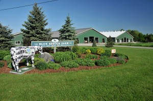 Audet's Blue Spruce Farm in Bridport, Vermont practices nutrient management to help improve water quality and to generate electricity. Photo by Blue Spruce Farm