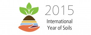 International Year of Soils logo 2015.