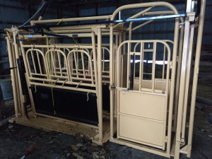A good squeeze chute makes handling beef cattle much more efficient andsafe for both animals and people